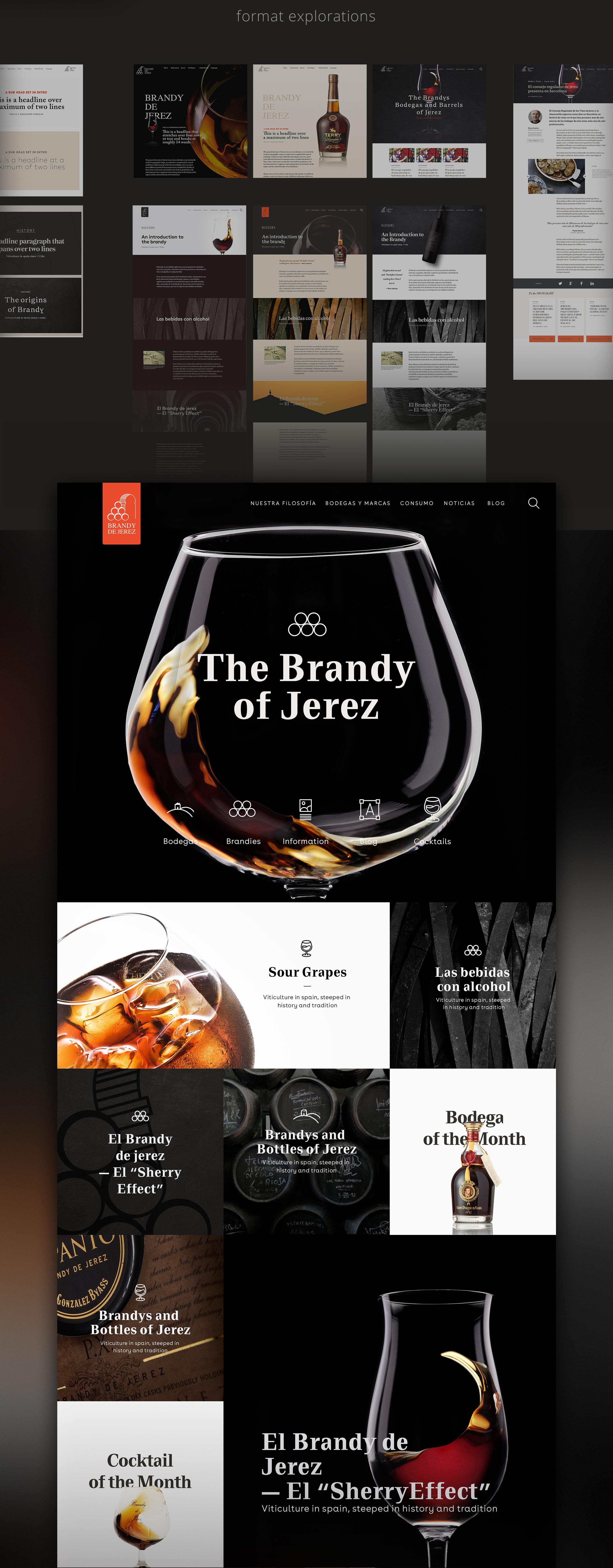 Case-Brandy-4